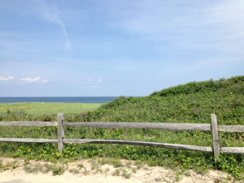 Coast Guard Beach - Cape Cod